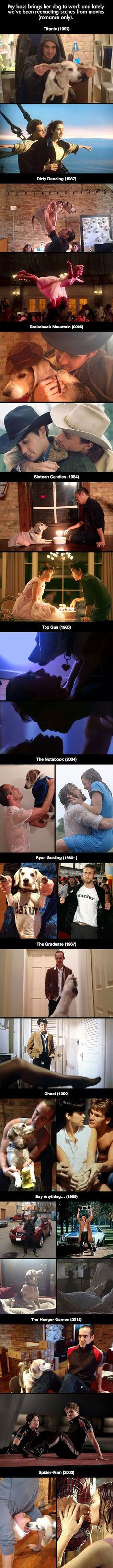 Dog Reenacts Famous Movie Scenes – 20 Pics