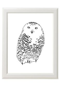 Poster mit Eule // poster with owl by SilverRainArt via DaWanda.com