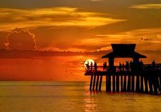 Naples Pier at Sunset Old Florida, Naples Florida, Florida Travel, Florida Beaches, Clearwater Florida, Tampa Florida, South Florida, Naples Pier, Best Resorts