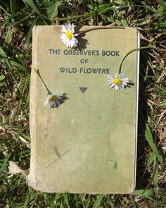 gale: if you died i couldnt have her either me: 1-800-DID-I-ASK