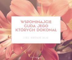 Wysławiajcie cuda Jego których dokonał 1 Księga Kronik 16;12 Werset biblijny cytat z Biblii