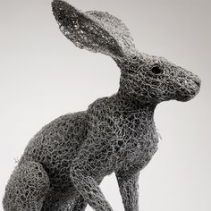 Kendra Haste - ARIZONA JACKRABBIT (2013) - Sculptures grillages  / Galvanised wire Sculptures