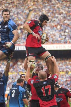Canterbury Crusaders Love me some rugby men