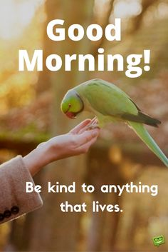 Good morning. Be kind to anything that lives.