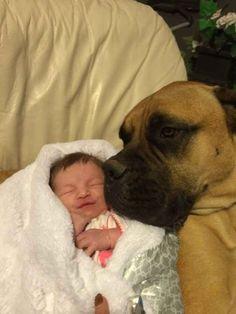 This excellent babysitter.