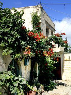 Old cretan House in the small village of Listaros. Located near the villages of Sivas and Kamilari. Heraklion, Crete Island, Greece Islands, Tan House, Ancient Greece, The Good Place, Sidewalk, Coast, Greek