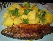 NejRecept.cz - Ty nejlepší recepty každý den Steak, Salads, Cooking Recipes, Chicken, Author, Fish, Salad, Steaks