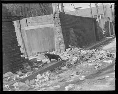 Dirty streets and alleys Boston. 1942.