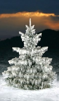 Such a beautiful tree..... dripping with icicles.♒✴♒