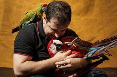 Clínica veterinária de animais silvestres e exóticos de Goiânia. #exoticvet #passaros #parrot #birds #petsgoiania #passaros #clínica #veterinario #silvestres #exóticos #avelegalizada #pets #amor #natureza #arara by exoticvet_goiania http://www.australiaunwrapped.com/