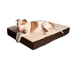 Memory-foam bed to support senior pets with orthopedic problems.