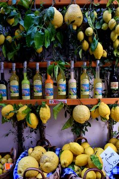 Lemons and limoncello in Amalfi European Summer, Italian Summer, Italian Life, Italian Romance, Italian Style, Summer Aesthetic, Travel Aesthetic, Beautiful World, Beautiful Places