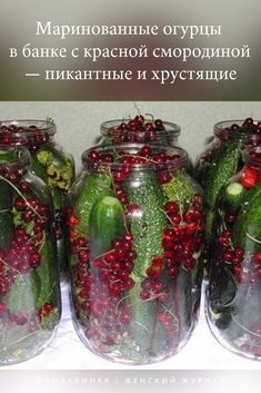 Egyptian dessert recipes can give you this pleasure and more. 2000 Calorie Meal Plan, Egyptian Desserts, Middle Eastern Desserts, Clever Kitchen Storage, Alcohol Recipes, Fruit And Veg, Tasty Dishes, Mason Jars, Christmas Bulbs