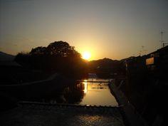 夕陽タイム:魚の庭 2013-09-19