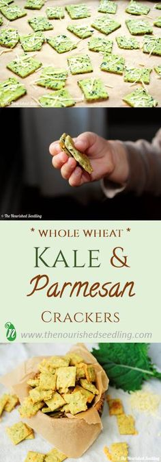 Kale and Parmesan cheese complement each other well as they come together with half whole wheat flour to create a tasty and savory cracker.