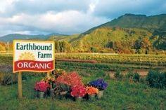 Our Farm Stand | Earthbound Farm Organic