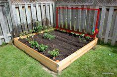 red trellis for raised bed garden