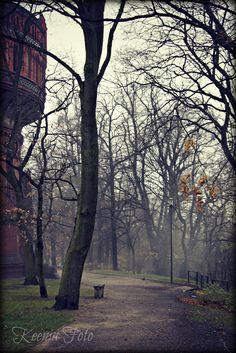 Poland, Bydgoszcz, Szwederowo  www.keeniafoto.wordpress.com