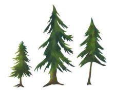Evergreen Trees Stencil