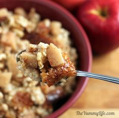Slow Cooker from Scratch®: Overnight Slow Cooker Apple Cinnamon Steel-Cut Oatmeal from The Yummy Life