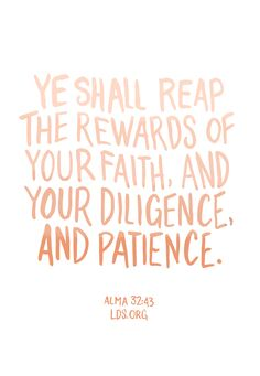 Ye shall reap the rewards of your faith, and your diligence, and patience. —Alma 32:43 #LDS