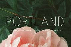 Portland by Jen Wagner Co on @creativemarket: a beautiful option for an all caps design