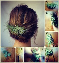 living plants to wear | How To Hair - DIY Hair Resource From How To Hair Girl | Accessories ...