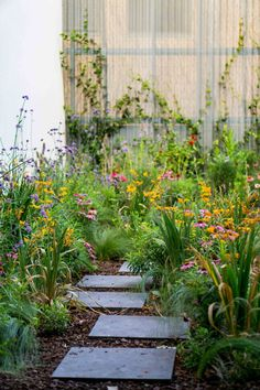 Green roof with Crocosmias Sunglow, Echinaceas, Stipas and Verbenas in garden in Madrid Lawn And Garden, Garden Paths, Garden Art, Garden Ideas, Amazing Gardens, Beautiful Gardens, Green Roof System, Flower Garden Design, Starting A Garden
