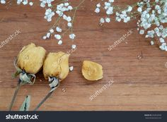 Dry Roses With Baby'S Breath (Gypsophilia Paniculata) And Wood Background Stock Photo 263652038 : Shutterstock