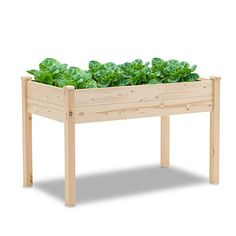 Amazon.com : SUNCROWN Outdoor Wooden Raised Garden Bed Planter Box Kit for Vegetables Fruits Herb Grow, Patio or Yard Gardening, 4ft- Natural : Garden & Outdoor Wood Planter Box, Wood Planters, Wooden Raised Garden Bed, Garden Supplies, Lawn And Garden, Outdoor Gardens, Herbs, Backyard, Natural Garden