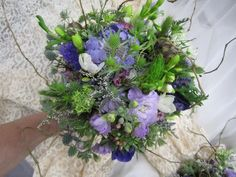 This gorgeous Bride's bouquet looks fresh picked from the garden! Gathered together are thistle, star of Bethlehem, scabiosa,lavender stock white freesia, limonium, wax flower, purple statice, and curly willow. $190 - 225