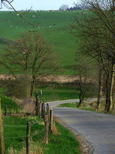 Landscape @ Ulvend, between dutch and belgium border:   Google Maps:  http://maps.google.nl/maps?q=50.758043,5.830007
