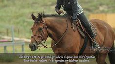 Jean d'Orgeix à dit « Ne pas oublier que le cheval n'a jamais lu un traité d'équitation. Il faut donc lui « expliquer » et lui apprendre avec indulgence et patience ».
