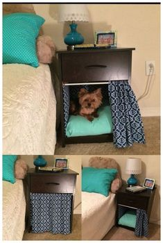Why is using a dog house a good idea? Most people tend to have the misconception that dog houses are meant for only those dog owners who intend to keep their dogs outside. However, the truth is that a…Read more → Animal Room, Dog Bedroom, Bedroom Ideas, Puppy Room, Diy Dog Bed, Diy Bed, Dog Furniture, Cheap Furniture, Dog Rooms