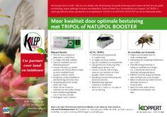 Meer kwaliteit en optimale bestuiving door @Koppert Biological Systems NL hommels. (#Tripol en #NatupolBooster) . Neem contact op met onze Aardbeien & Klein fruitspecialisten voor meer info: http://www.go-tuinbouw.nl/specialisten