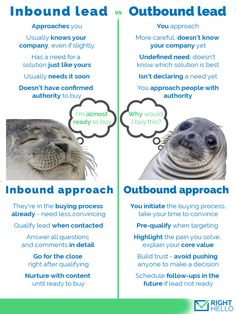 Seals know a lot about B2B leads! http://righthello.com/approach-b2b-sales-leads/