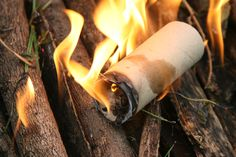 How to Make Fire Starters with Paper Rolls and Dryer Lint -- via wikiHow.com