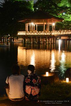 Memory of Summer at Nara