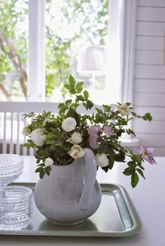 Vilda rosor, r�v och lite poolparty!