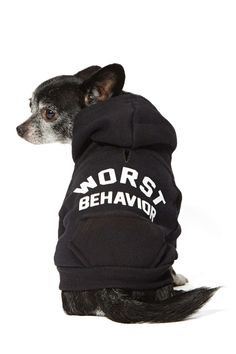 Worst Behavior Dog Hoodie - so perfect for my pooch! want.