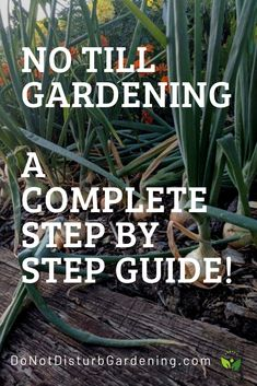 Best tips and tricks about organic gardening Organic Compost, Organic Gardening Tips, Vegetable Gardening, Flower Gardening, Organic Farming, Sustainable Farming, Veggie Gardens, Succulent Gardening, Sustainable Living