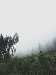 Perdu dans la brume