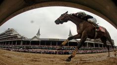 When the crowds and hats and bourbon descend on Churchill Downs for the Kentucky Derby, all eyes will be on the thoroughbred racehorse—horses that have traveled thousands of miles for the two-minute race. How do elite racehorses fly? Well, let us ascend into the world of equine air travel.