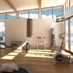 Home gym - boxing bag, yoga space, schwinn fan bike, weights, jump rope ...