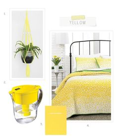 Dorm Room Décor Guide: Yellow Urban Outfitters love the chain plant Dorm Room Colors, Urban Outfitters, Ashley Walters, Target, College Life, Decoration, Home Remedies, Home And Garden, Room Decor