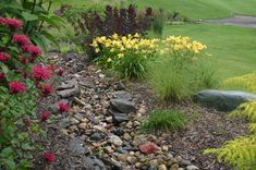 Landscaping for drainage