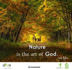 Nature is the art of God. ~Dante Alighieri #Quoteoftheday.Stay with us & protect #environment.https://www.facebook.com/amaherbal/photos/a.283777945111081.1073741829.274434279378781/498672100288330/?type=1&theater…