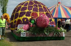 spalding linconshire uk  tulip parade