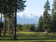 Alderbrook Golf & Yacht Club in Union, WA is a year round course with a gorgeous view of the Olympic Mountains. #alderbrookgolf #unionwa www.OneMorePress.com