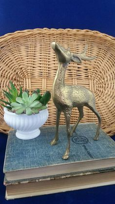 Check out this item in my Etsy shop https://www.etsy.com/ca/listing/493345912/vintage-brass-deer-stag-brass-animal